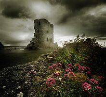 Scarborough Castle by springwatcher