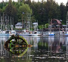 Morning Harbor Reflections by DJ LeMay