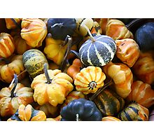Fall Vegetables Photographic Print