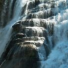 Close Up, Ithaca Falls by AlGrover