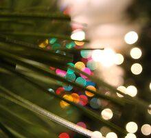 Christmas Lights by racheljenkin