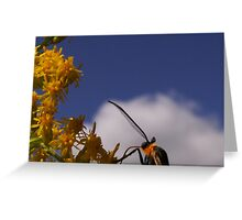 That's Mr. Antennae To You Greeting Card