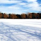 Cold And Crisp by Debbie Oppermann