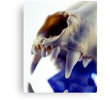 Light Box - Crystal Skull Canvas Print