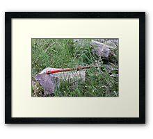 Spirit in Nature Framed Print