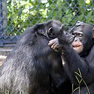 A Kiss makes everything better! by Missy Yoder