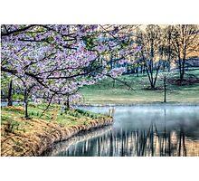 Cherry Blossom Sunrise Photo Photographic Print