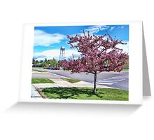 A Touch of Beauty Greeting Card