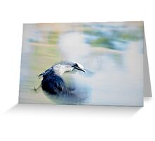 A bird in stop action Greeting Card