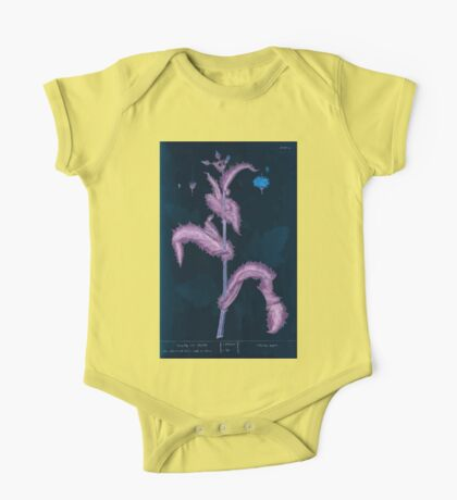 A curious herbal Elisabeth Blackwell John Norse Samuel Harding 1737 0086 Prickly Sow Thistle Inverted One Piece - Short Sleeve