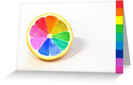 Pantone Colour Wheel by Sarah Moore