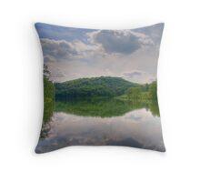 Cox Hollow Lake Throw Pillow