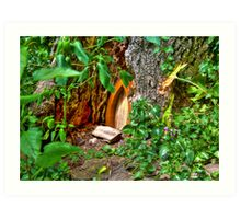 Entrance to Fairyland Art Print
