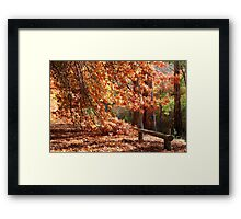 Autumn Landscape3 Framed Print