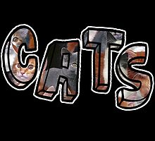 Cats Font Collage  by Isabella Mendiola