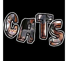 Cats Font Collage  Photographic Print