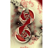 The Rose Vine Photographic Print