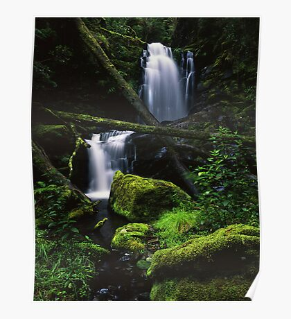 Great Otways National Park - Yanathan Falls Poster