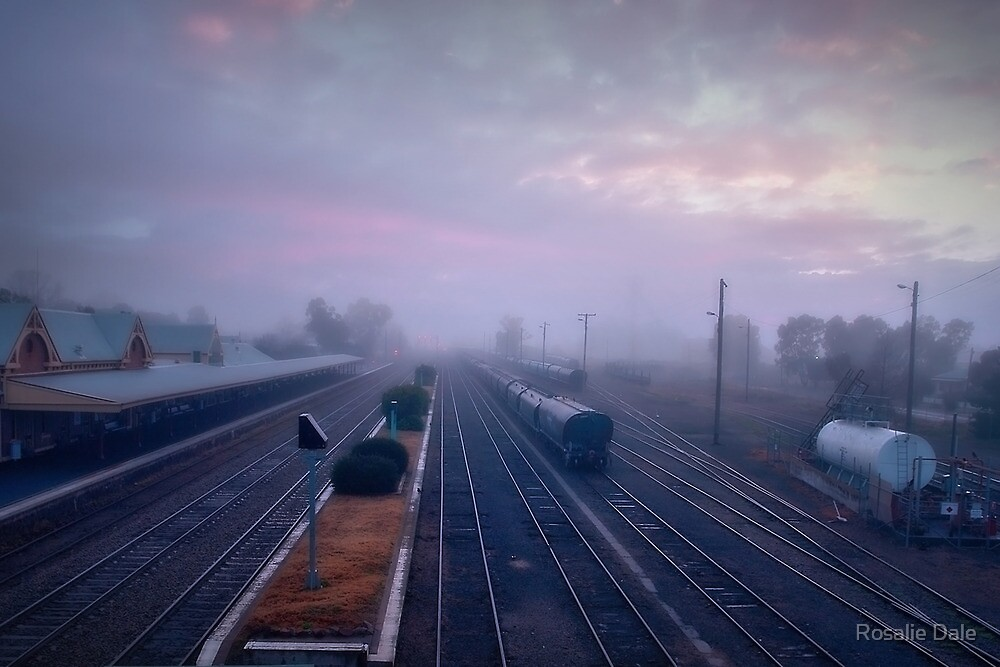 Cootamundra morning ... by Rosalie Dale
