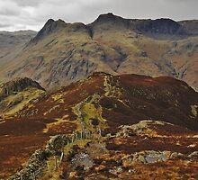 On Lingmoor Fell by Blagnys