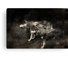 The tribesmen Canvas Print