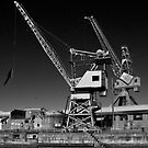 Cockatoo Island Cranes by Werner Padarin