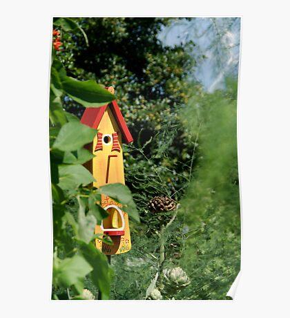 Bird house - Eden project Poster