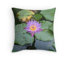 Shining Light Throw Pillow