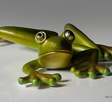 Frog by Nigel Donald