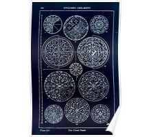 A Handbook Of Ornament With Three Hundred Plates Franz Sales Meyer 1896 0276 Enclosed Ornament Circular Panel Inverted Poster