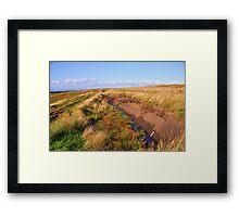 A Peat Bog in Western Ireland Framed Print
