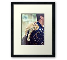 cat purrs and rubs shoulders Framed Print