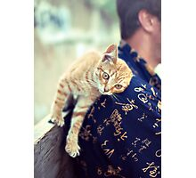 cat purrs and rubs shoulders Photographic Print