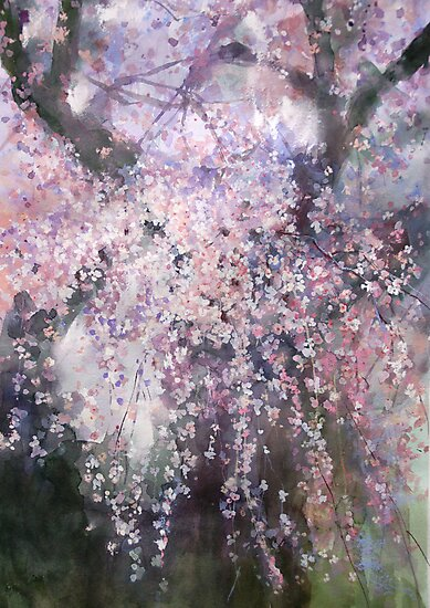 The droop cherry blossoms...「youen」 by vasenoir