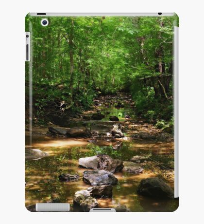 The Enchanted Stream Near Grandma's House iPad Case/Skin