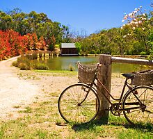 A bicycle in Hahndorf, Adelaide Hills by Elana Bailey
