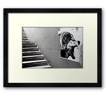 Paris - The wild stairs. Framed Print