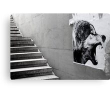 Paris - The wild stairs. Canvas Print