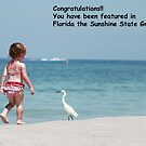 Florida Banner by Missy Yoder