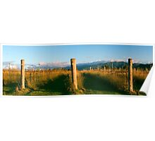 Outback mountain and vineyard in the Scenic Rim, Queensland. Poster