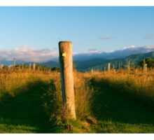 Outback mountain and vineyard in the Scenic Rim, Queensland. Sticker