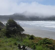 Pacific Rim National Park,  Long Beach by Brian Middleton