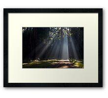 I see the light... Framed Print