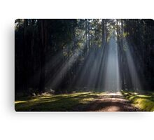 I see the light... Canvas Print