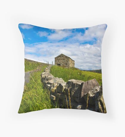 Along The Rural Road Throw Pillow