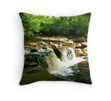 Sunlit Falls Throw Pillow