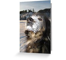 chico the snow monster Greeting Card
