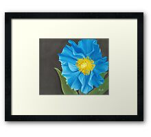 """""""Asian Blue,"""" 10"""" x 8"""" Soft Pastel on Pastelbord. Himalayan Blue Poppy with Bright Orange & Yellow Center Framed Print"""
