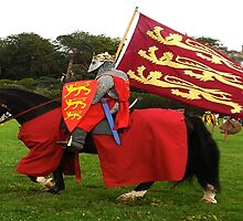 A King's Colour's by Dawn B Davies-McIninch