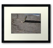 Guess who... Framed Print
